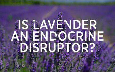 Is Lavender An Endocrine Disruptor?
